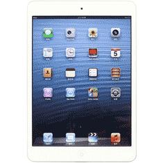 iPad Mini1